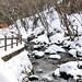 Nasu Kogen - Winter 10