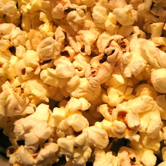 meal(0.0), breakfast(0.0), flower(0.0), produce(0.0), petal(0.0), kettle corn(1.0), food(1.0), snack food(1.0), popcorn(1.0),