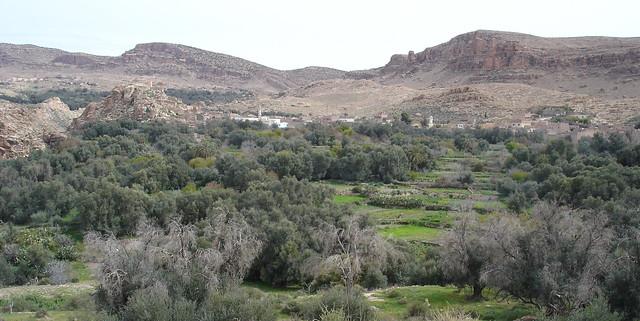 Ah Frah viewed from Ikhef al Laaqabth, 2010, منظر لبني فرح من تلة رأس العقبة