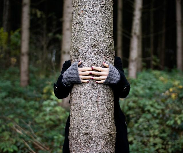 hug by Sebastian Reiser