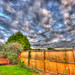 HDR Garden by benaviss