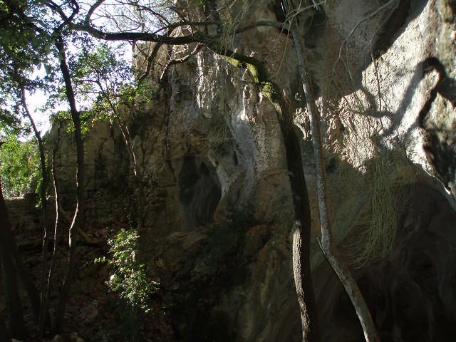 Header of le roc