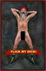 Flick My Dick !!   Light Switch Cover