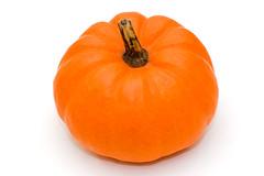 clementine(0.0), plant(0.0), produce(0.0), fruit(0.0), tangerine(0.0), mandarin orange(0.0), orange(1.0), vegetable(1.0), pumpkin(1.0), calabaza(1.0), food(1.0), winter squash(1.0), cucurbita(1.0), gourd(1.0),