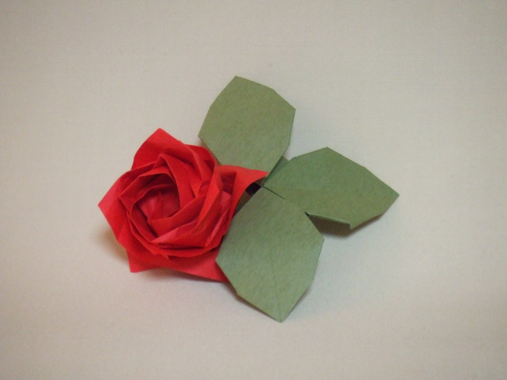 Flower with Leaves (Peter Budai) | Happy Folding | 768x1024