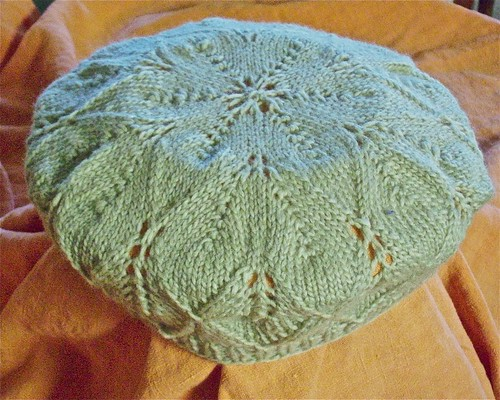 Free knitting patterns berets free patterns for Fave crafts knitting patterns
