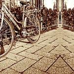bi-bicicletta