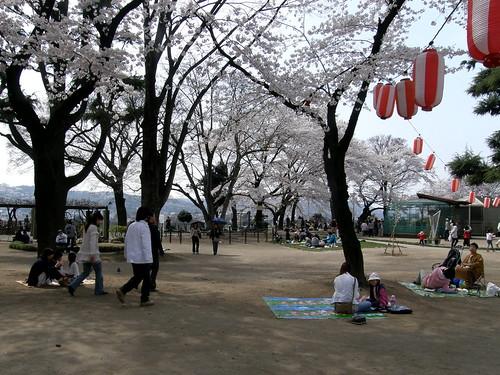 geotagged hanami takasaki 花見 群馬県 高崎 gummaprefecture geo:lon=139002502 geo:lat=36320183