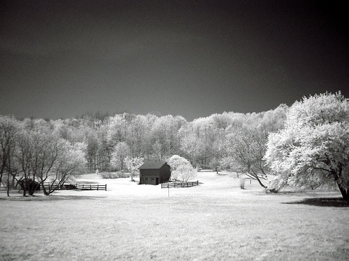 "Sony DSC-F707  ""NightShot""  ND8 + IR 850nm"