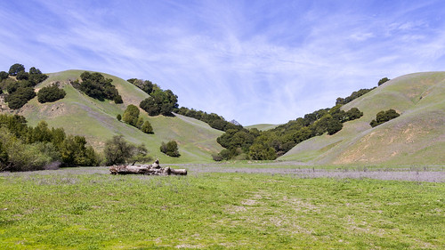 March Sunday at Briones Park