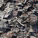 Haiti Earthquake by United Nations Development Programme