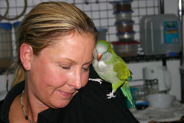 Scooter and Ali - So soft