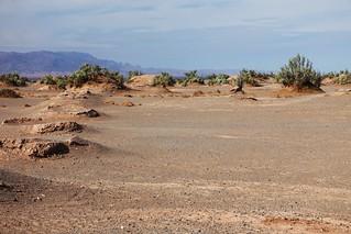 IMG_2507 Lut Desert