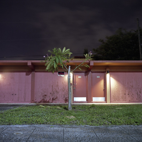 christmas eve pink urban usa west color tree green abandoned 6x6 tlr film beach night analog america dark square lens us reflex focus long exposure fuji mechanical little florida suburban south united tripod lawn patrick twin motel palm sidewalk mat v 124g pro epson after medium format fl states manual 500 joust yashica 220 estados 80mm f35 fujicolor c41 unidos yashinon v500 160s autaut soflo patrickjoust