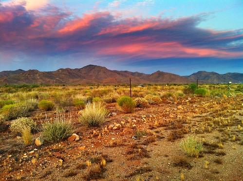 sunset arizona desert