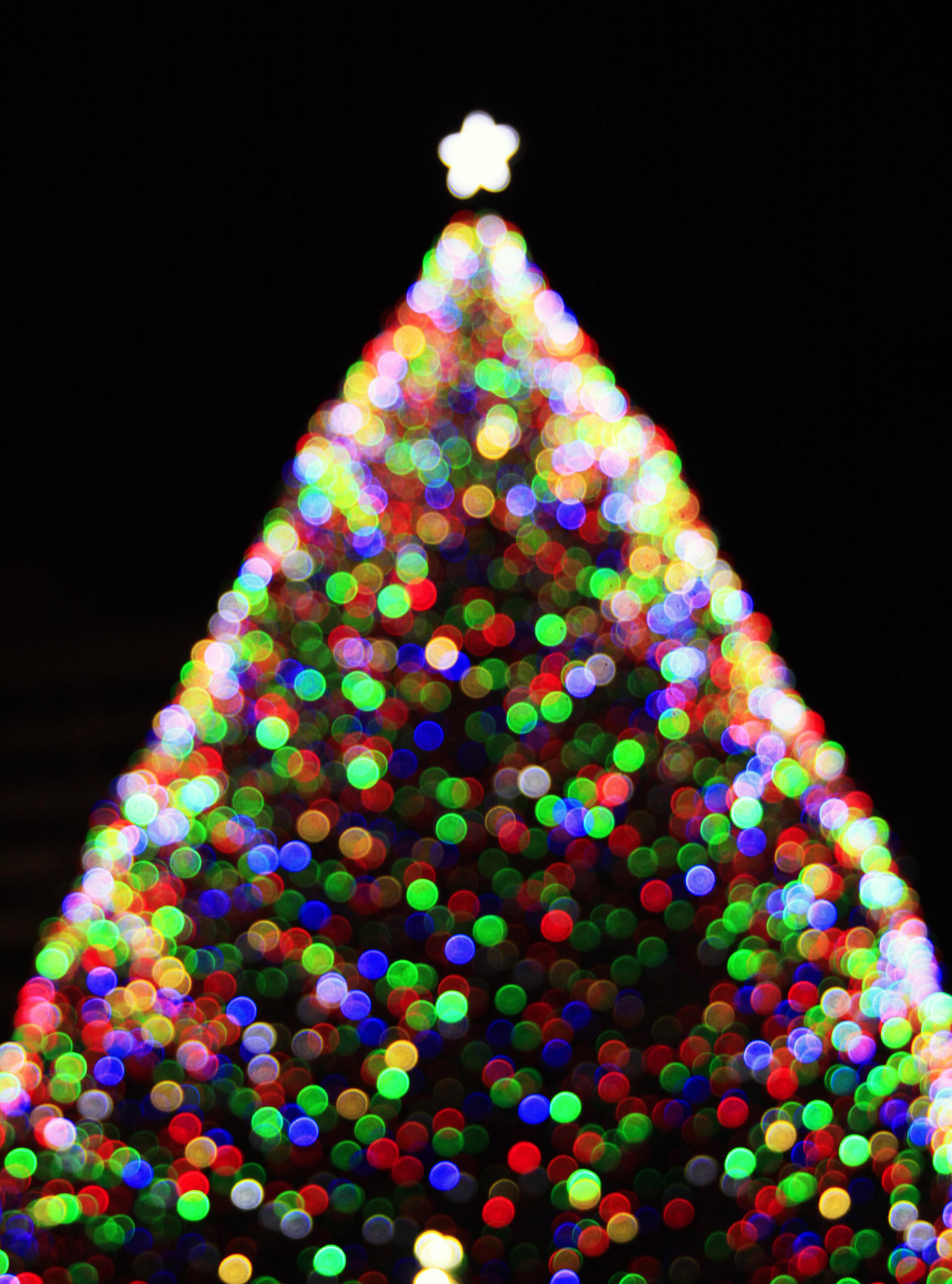 135 Christmas Tree Cataract Christmas Decoration Ideas 2018