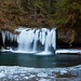Butte Creek Falls - Ice