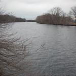 Charles River, 12 March 2010: Grey skies & waters