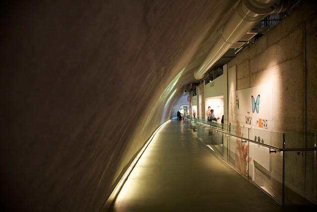 Darwin Centre Natural History Museum