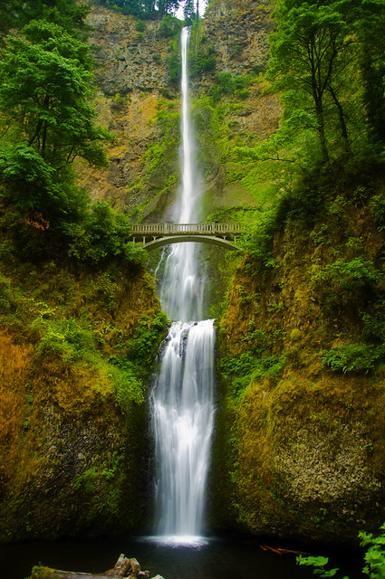 Majesty Of Multnomah