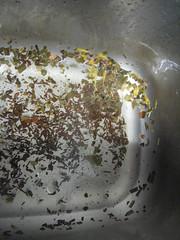 Tea leaves in the sink
