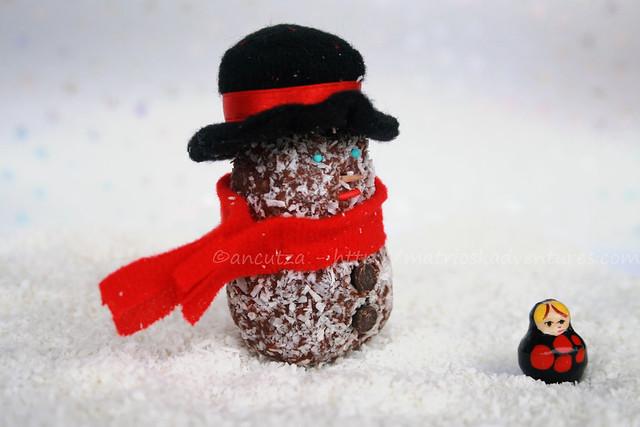 Tartufi di cioccolato con biscotti secchi e cocco