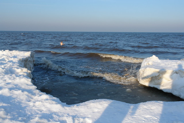 Usedom Germany  city photos gallery : ... swimming on land fast ice on Usedom, Germany | Flickr Photo Sharing