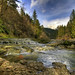 Washougal River - Washington - HDR
