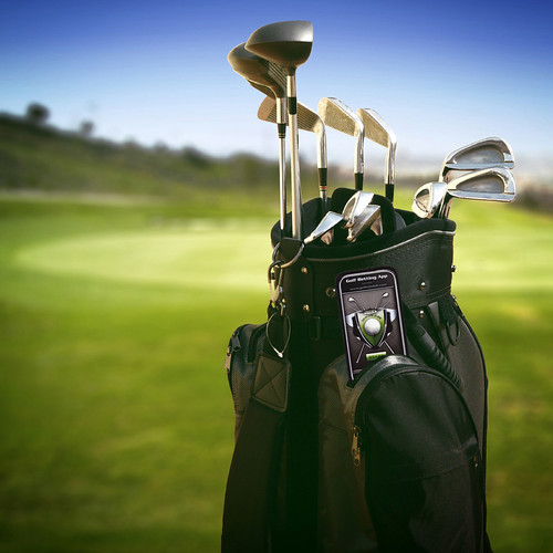 golf bag and clubs on course