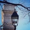 Bird, lamp, arch, 2/4/17