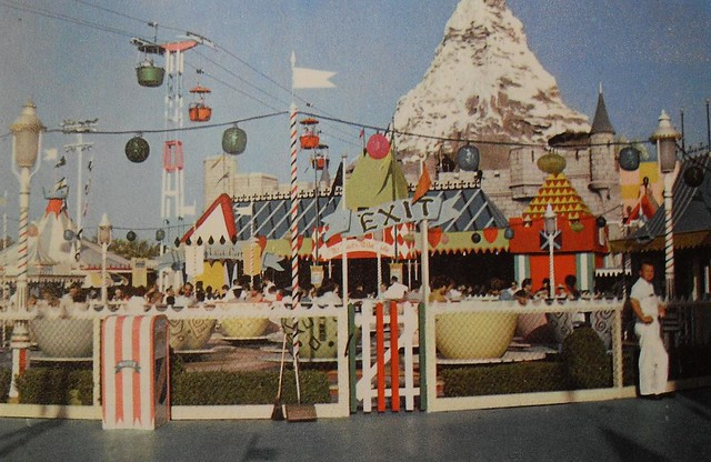 Disney Theme Park Case Study