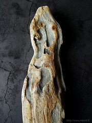 driftwood 06 - fear of the fossile man