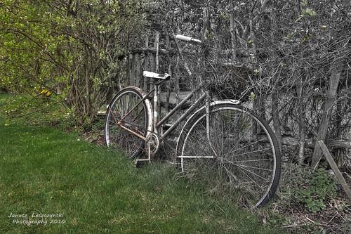 old green grass bike bicycle fence geotagged spring bush langley hdr approaching allergies janusz leszczynski antihistamines mixedcolorandbw 001940 geo:lat=49005842 geo:lon=122633858