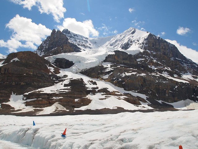 Columbia Icefields Tour by CC user coolinsights on Flickr