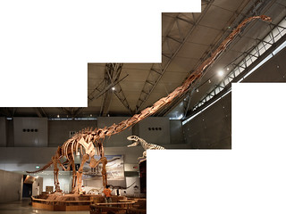 Mamenchisaurus - 01
