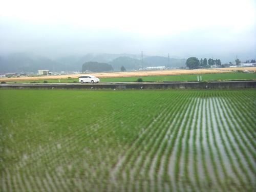 train fukui picplz
