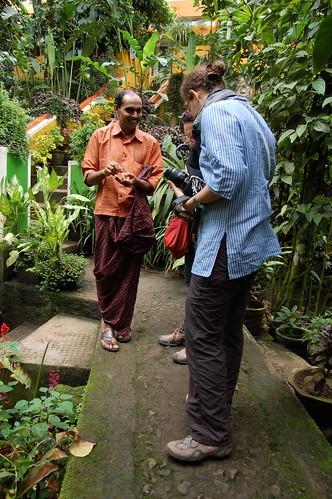 Ein indischer Gärtner erklärt die Planzen und Gewürze im Gewürzgarten in der Nähe von Periyar.