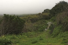 Carmel Meadows/Carmel River Beach