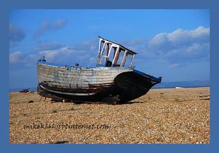 dungeness beach 57
