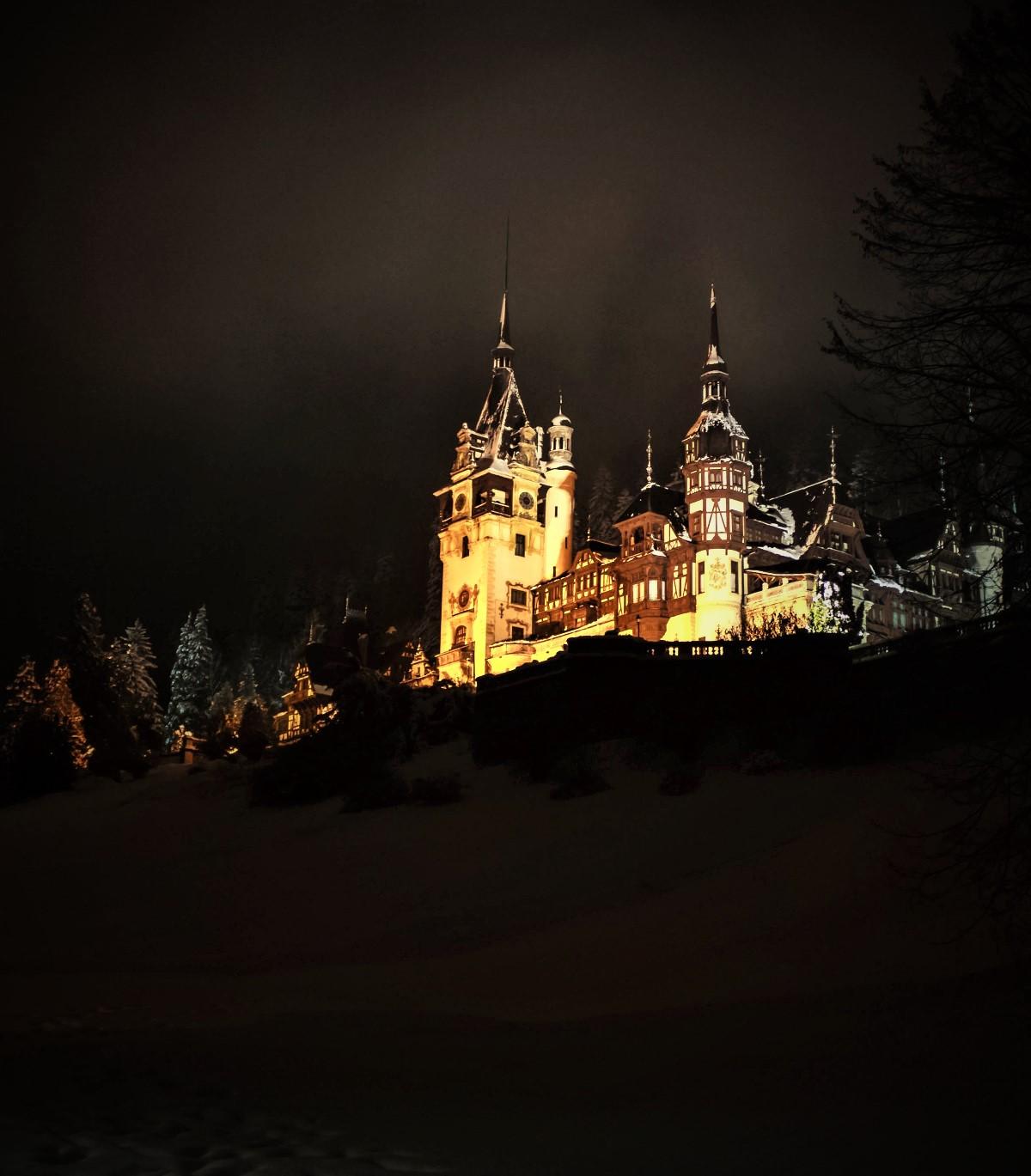 Peleş Castle. Credit Radueduard