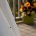 A ladybug means good luck by Lars Plougmann