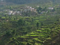 Badrinath & Mana Village