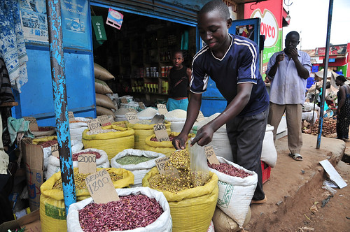 bean market15_lo