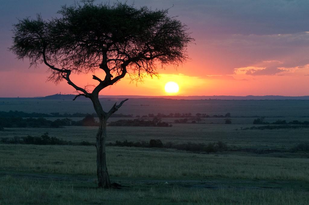 マサイマラ国立保護区の夕暮れ