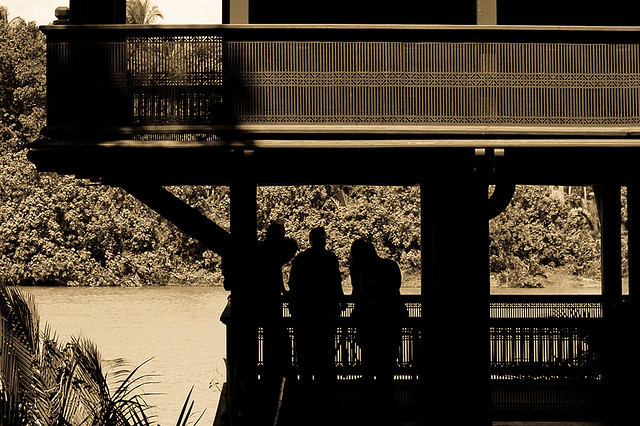 Under the shade (DSC0885)