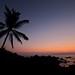Small photo of Sugarman Estate Sunset