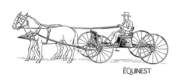 Image Result For Zz Coloring Page