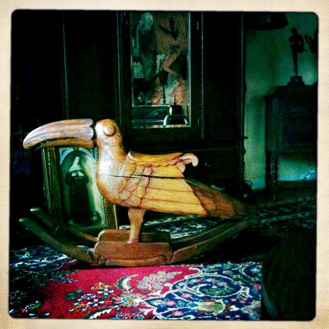 Rocking Toucan