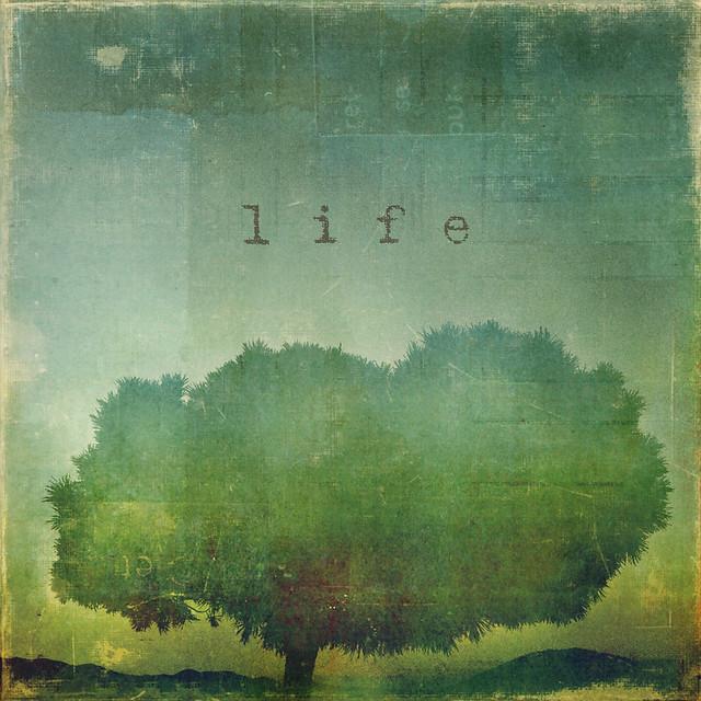 _life_