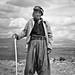 The Shepherd by Heber Vega